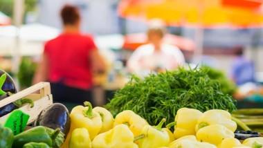 Sistemi di gestione della sicurezza alimentare: Requisiti per qualsiasi organizzazione nella catena alimentare
