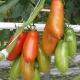 Boom del 4.0 nella filiera agroalimentare italiana