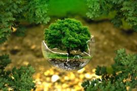 Cinque obiettivi strategici di Green Economy