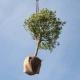 Nuovi strumenti per la sostenibilità degli edifici