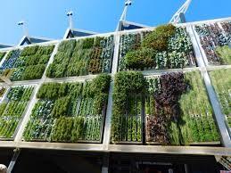 Edifici abbandonati diventano serre verticali