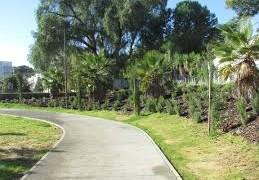 La qualità nella gestione del verde urbano