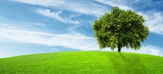 Linee Guida per la comunicazione ambientale