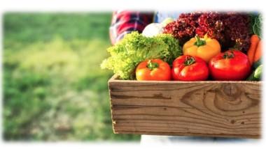 Sicurezza e igiene delle filiere agroalimentari: Sviluppi per i laboratori di prova