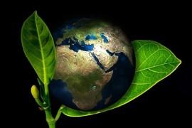 PA sostenibile e resiliente