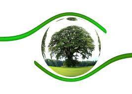 Linee guida per la prevenzione dei danni all'ambiente